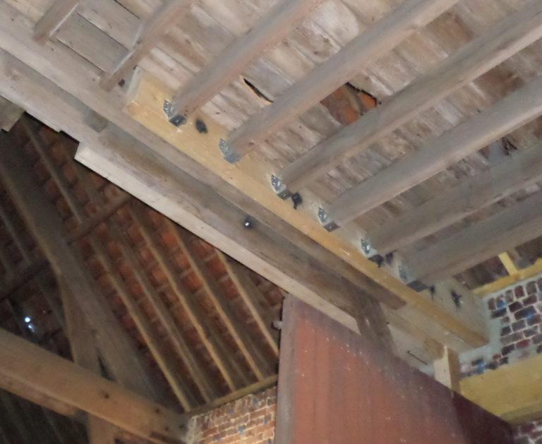 Traitement murs et bois contre la mérule